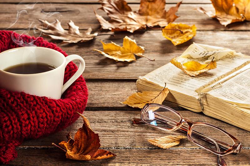 «Осень — идеальное время для чтения»