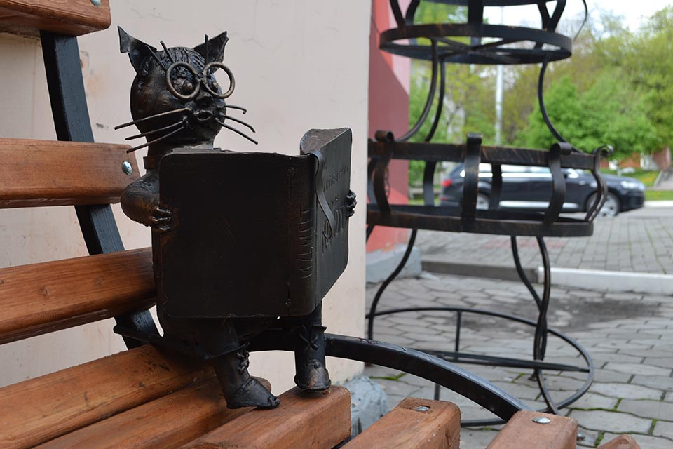 Читающий кот