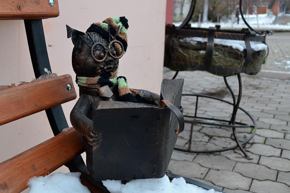Библиотечный кот зимой