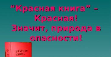 «Красная книга – красная, значит природа в опасности»