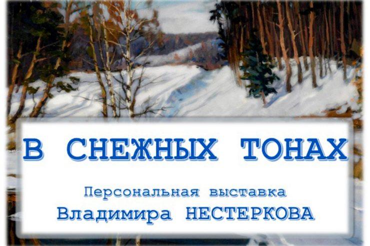 В снежных тонах